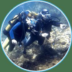 50 sites de plongées pour débutants - Aixplo Aix-en-Provence Plongée